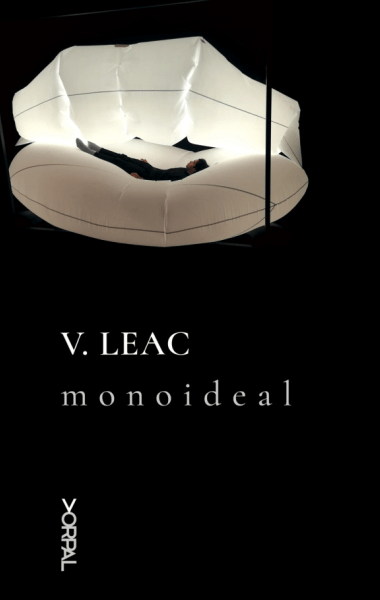 Vasile Leac Monoideal